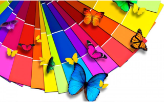 Как подобрать цвет натяжного потолка: правила выбора