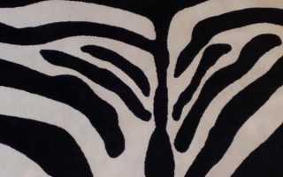 Отзыв: Ковер Зебра Синтелон — анималистическая расцветка ковра — стильно! но взвесьте все за и против перед покупкой