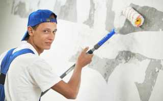 Нужно ли грунтовать стены перед штукатуркой — узнаем мнение профессионалов