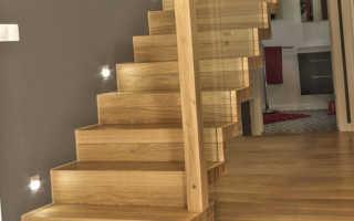 Из какого дерева лестница лучше: сравниваем характеристики дуба, бука и ясеня